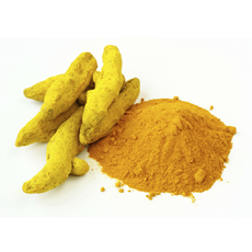 Shanson Exports : An Exporter Of Turmeric, Turmeric Exporter, Turmeric Supplier, Turmeric Producer, Turmeric Finger, Turmeric Powder, Turmeric Ahmedabad, Turmeric Exporter Gujarat, Turmeric Exporter India.